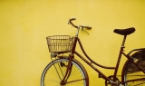 The Covid diaries: Day 41 - I Like to Ride my Bicycle